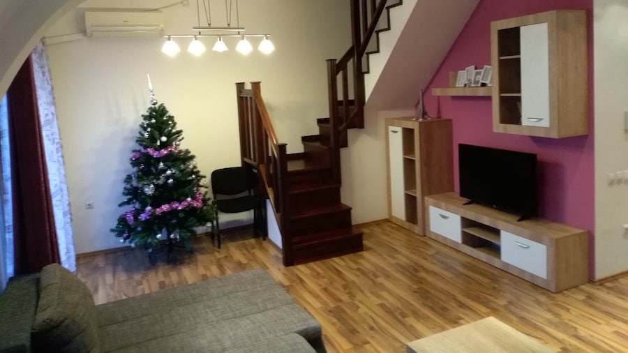 Penthouse Apartament Nufărul Oradea