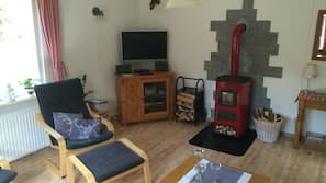 TV, fireplace, video-game console, DVD player