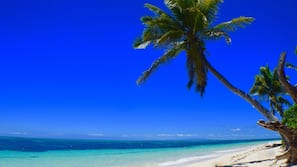 전용 해변