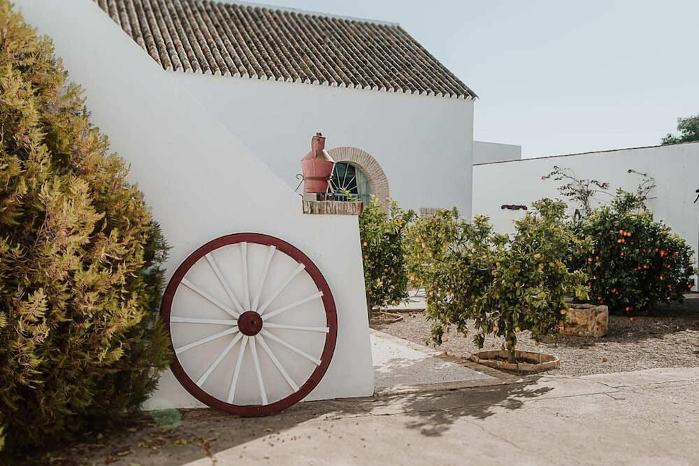 Property Grounds, Cortijo Santa Clara
