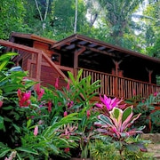 Treetops Vacation Rental in the Rainforest, Cayo, Belize,