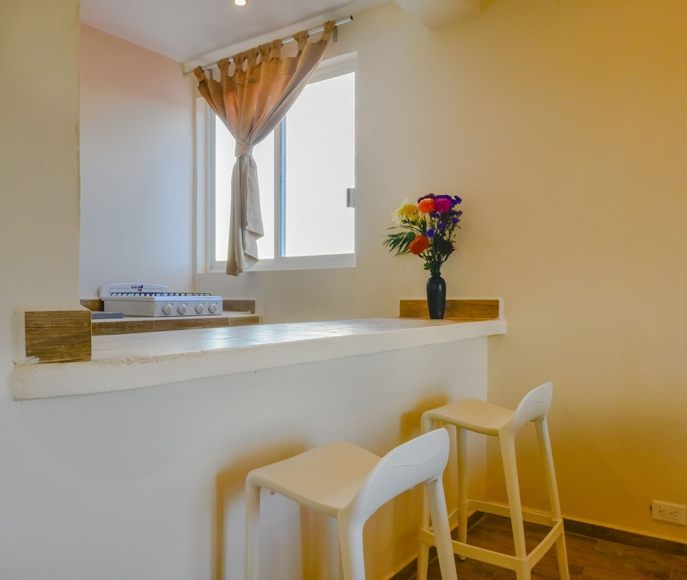 Private Kitchenette, Casa del Árbol Condo