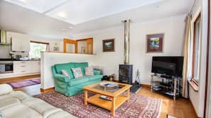 Flat-screen TV, fireplace, ping pong table, books