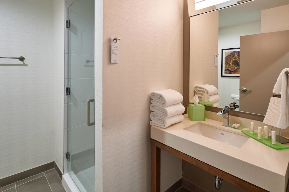 Bathroom, Courtyard by Marriott El Paso Downtown/Convention Center