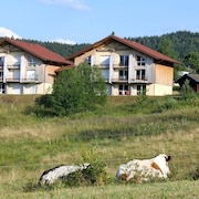 Apartment With one Bedroom in Xonrupt-longemer, With Wonderful Mountain View - 10 km From the Slopes