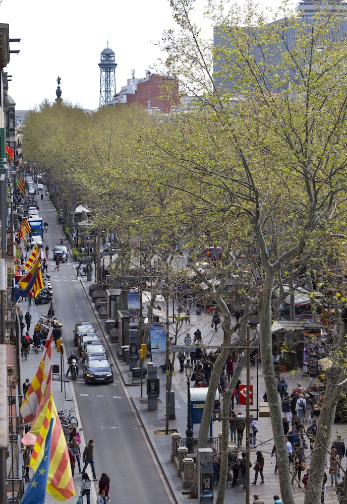 View from Property, Apartments Rambla 102