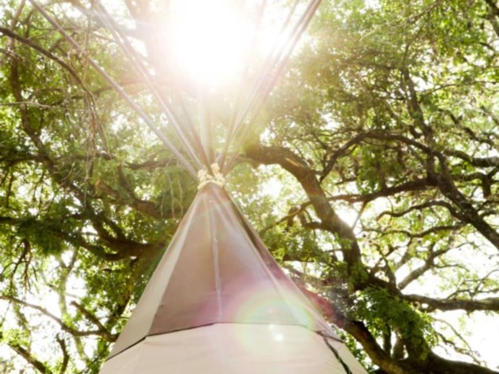 New Braunfels Camping >> The Guadalupe Tipi 5 Yellow Flower Campsite In New Braunfels