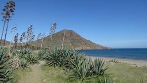 Ubicación cercana a la playa, tumbonas, sombrillas y toallas de playa