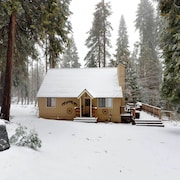 Pine Cone Chalet Chalet 4