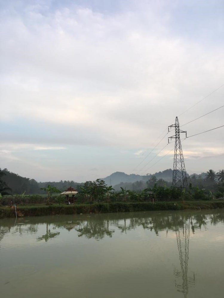 View from Property, Wichuda Fishing Park & Homestay