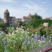 Charming House in Amazing Burgundy Medieval Village + Private Garden and Terrace
