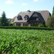 Spacious Apartment in Alsace With Spectacular Garden Views From its Terrace, 20min From Strasbourg