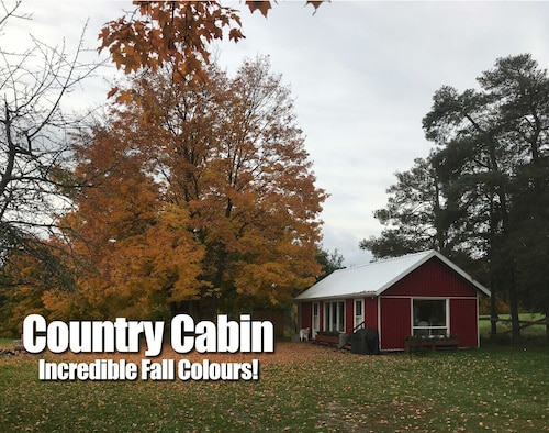 Fall Colours at Country Cabin for Your Long / Short Stay Near Toronto Newmarket