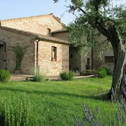 Apartment in the Tuscan Style Countryside Between San Giovanni D'asso and Montalcino