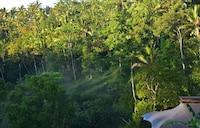 Capella Ubud (4 of 71)