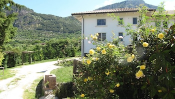 Bed and Breakfast Macchia d'Olmo