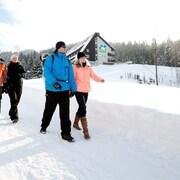 스키 및 설상 스포츠
