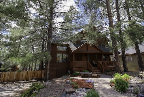 Escape to This Dream Cabin in the Towering Pines!
