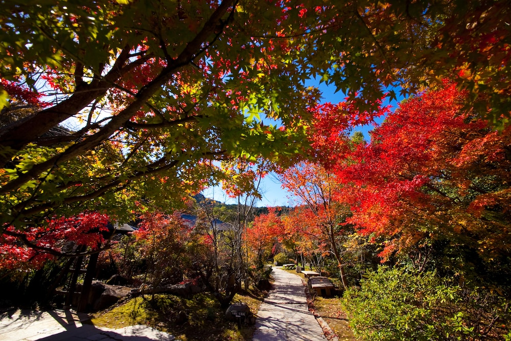 八面山金色温泉 こがね山荘 Expedia提供写真
