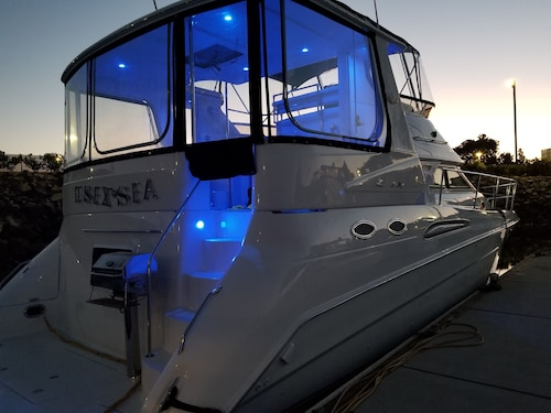 45 ft Sea Ray Motor Yacht Located in Beautiful San Diego bay