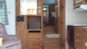 TV, DVD player, video library