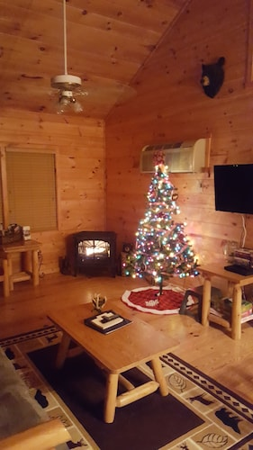 Living Room, Cozy Cabin With Hot tub - Short Walk to Downtown