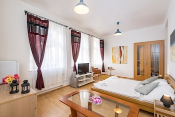 Spacious Apartments in Heart of Prague