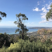 Dream Views at Arthurs Seat B&B