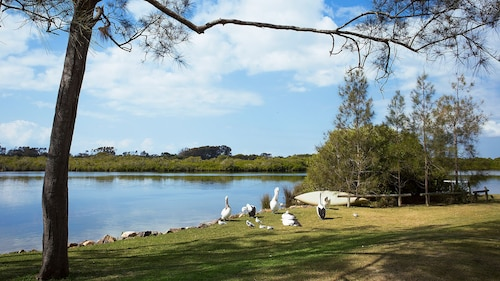 Stuarts Point Holiday Park
