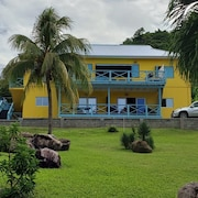 Casa Calypso - The Leeward Apt. All That you Need
