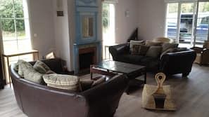 Télévision, cheminée, lecteur de DVD
