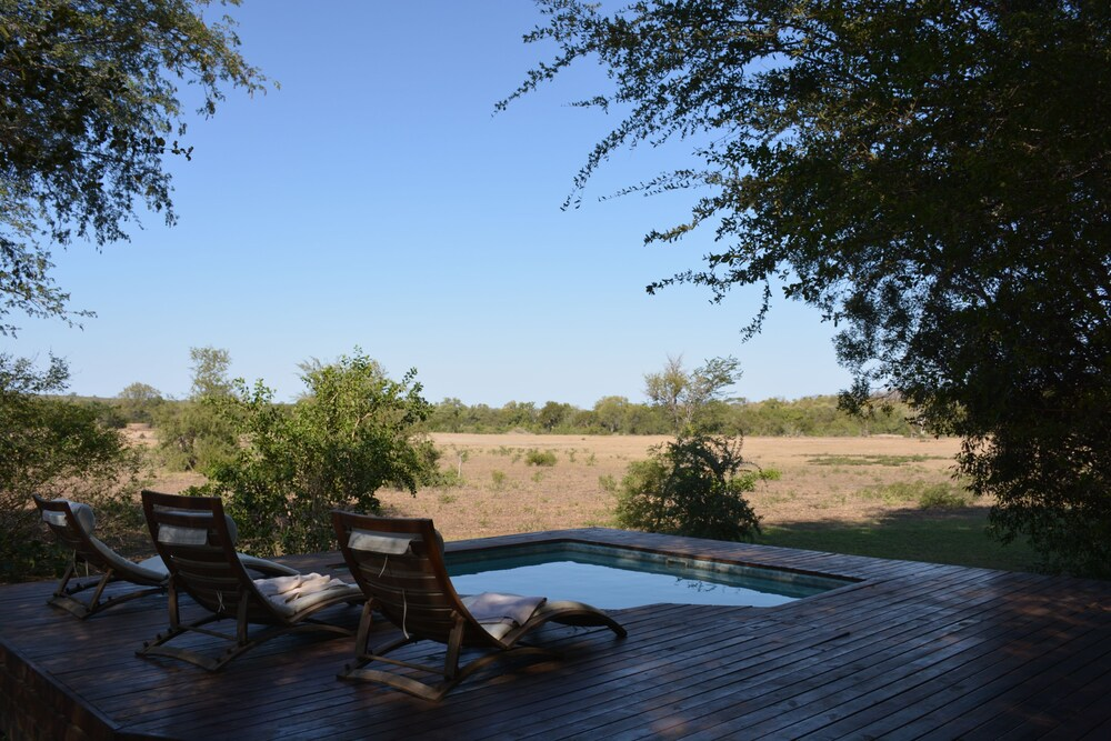 Outdoor Pool, Rhino Walking Safaris