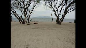 Perto da praia, bar na praia