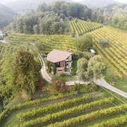 A House in the Vineyard