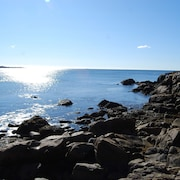 Oceanfront Home W/crashing Surf in Schoodic/acadia 3 Bedrooms 2 Bathrooms Home