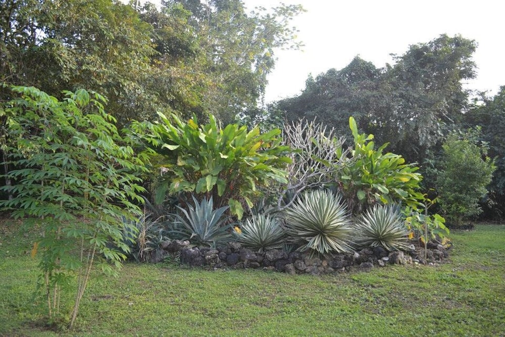 Property Grounds, Lush Jungle-family Friendly, Near ATM Caves & Mayan Ruins & Belmopan City