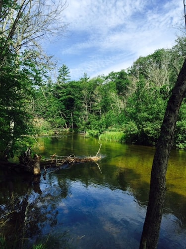 Nearby Fishing, Hunting, Canoeing, Kayaking, Hiking, Biking, And More!