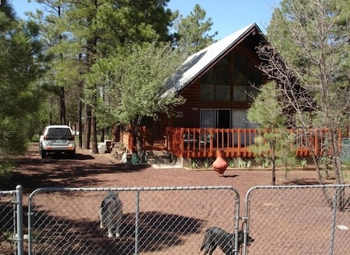 Cozy ' Lodge-style' Rustic Cabin-completely Fenced With Doggie Door!