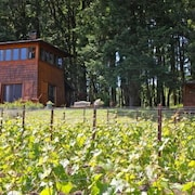 Beautiful Cabin in the Heart of Oregon Wine Country - Stunning Views!