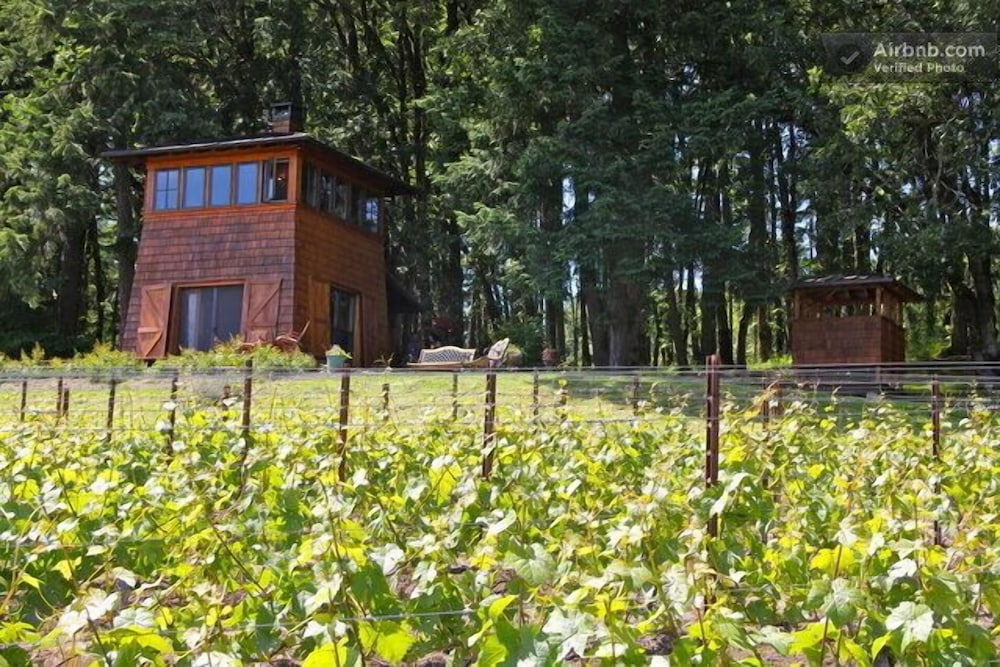 Beautiful Cabin In The Heart Of Oregon Wine Country Stunning Views 0 Out 5
