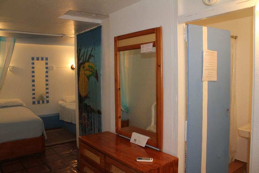 Room, Trade Winds Guesthouse