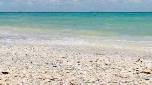 Beach umbrellas, beach towels