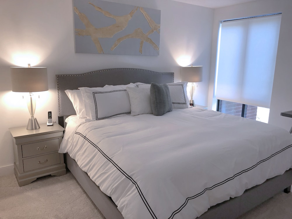 Luxury Apartment One Bedroom In Back Bay Boston