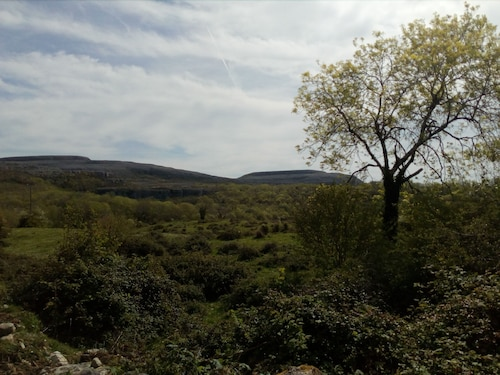 Burren Bushcraft - Camping & Adventures