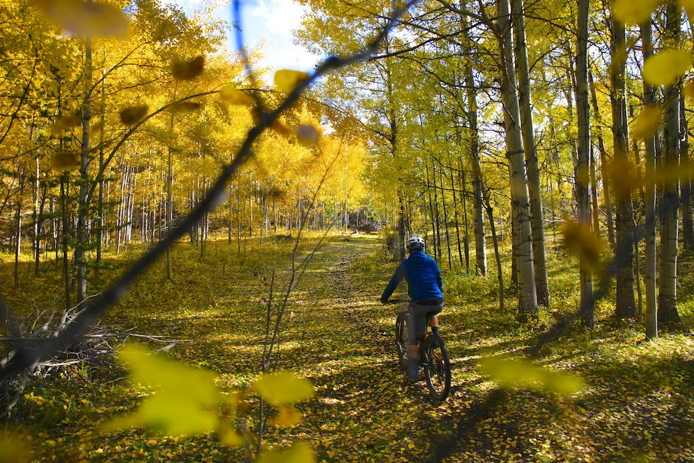 Bicycling, Meadow Lake Guest Ranch