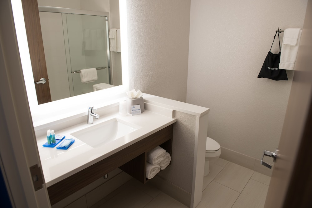 Bathroom, Holiday Inn Express & Suites Merrillville