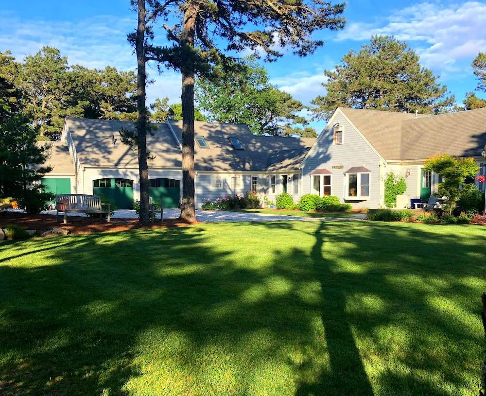 Hilltop Tea: Views and Reviews 82
