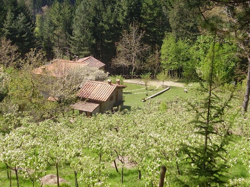 House With one Bedroom in Bibbiena, With Wonderful Mountain View, Pool Access, Furnished Garden