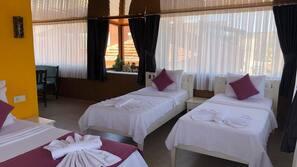 Premium bedding, minibar, free WiFi, bed sheets
