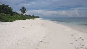 Beach nearby, white sand